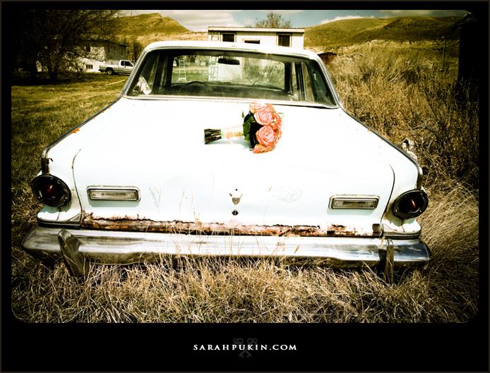 car-blog2