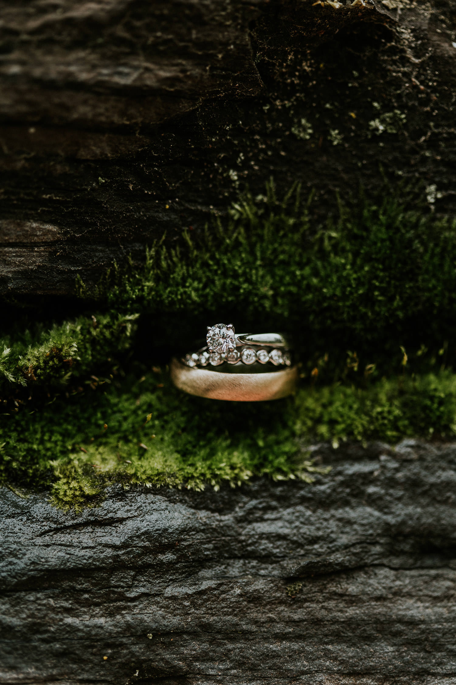 azuridge-estate-hotel-wedding-photographer-sarah-pukin-0114