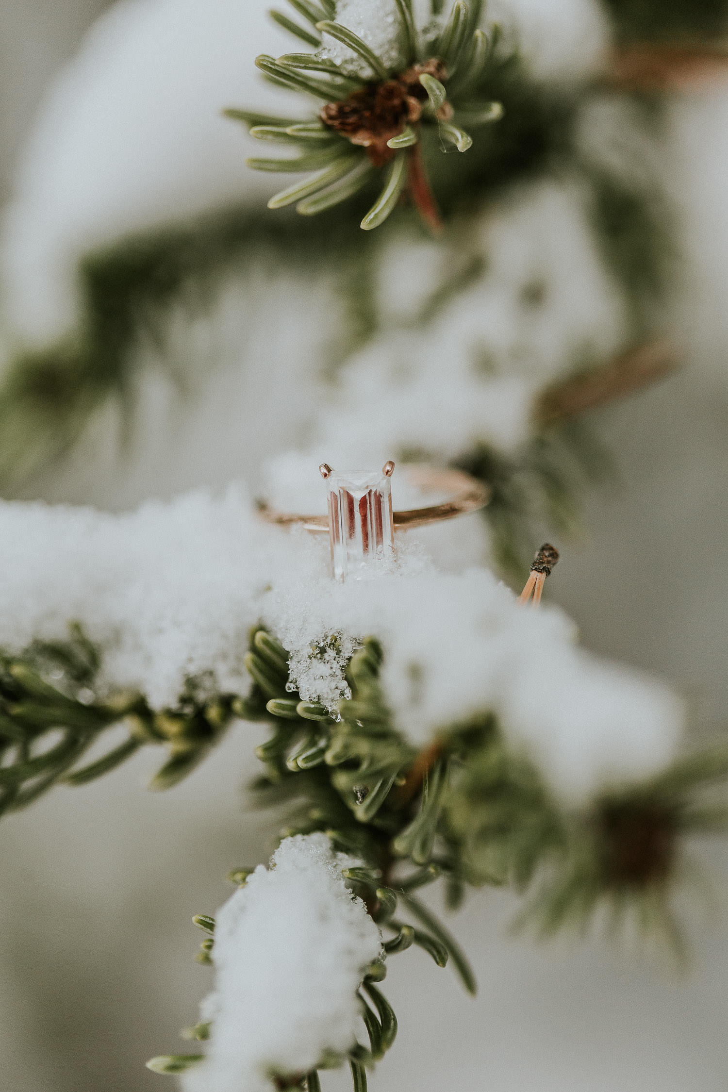 engagement ring in Kananaskis engagement photos - sarah pukin